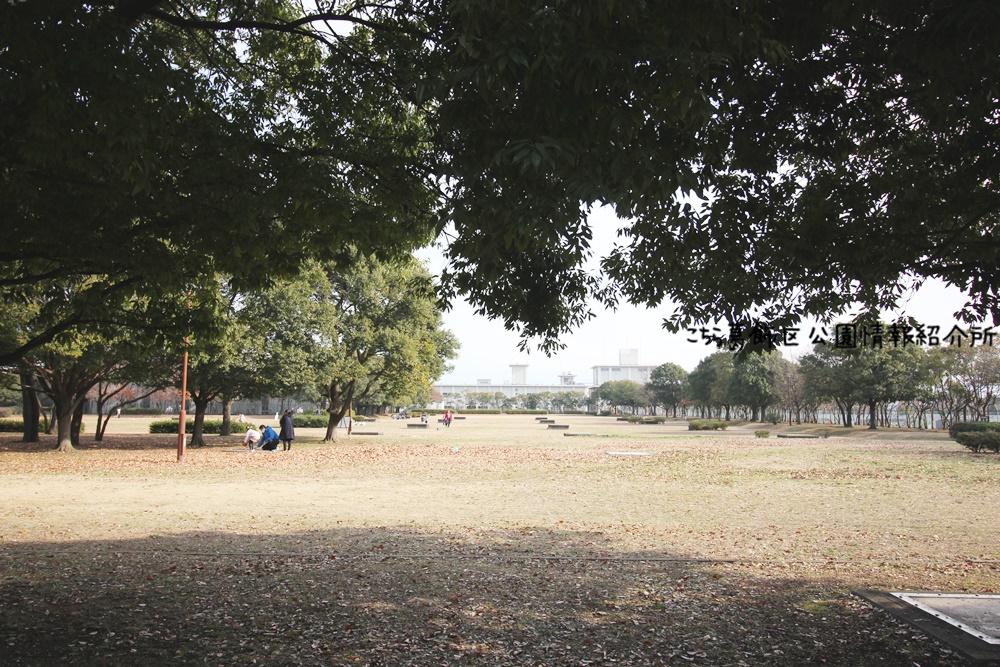 中川公園A地区